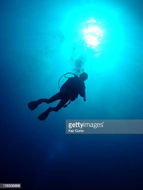 diver silhouette - シャルムエルシェイク ストックフォトと画像