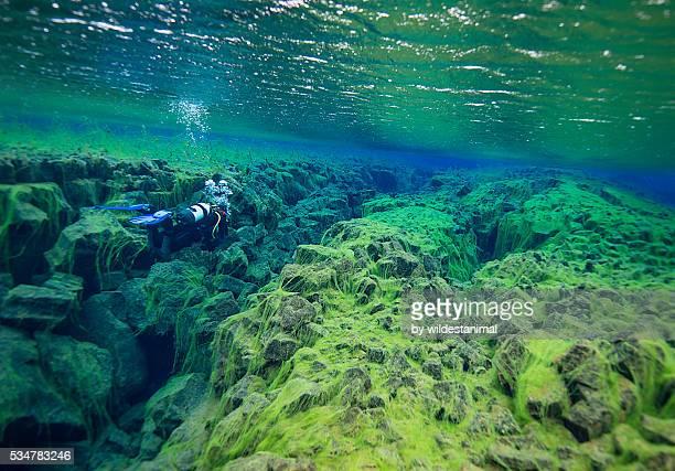 diver through little crack - green algae ストックフォトと画像