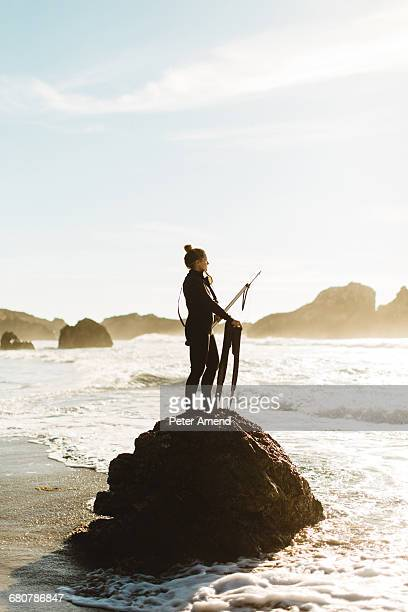 diver with speargun standing on rock, big sur, california, usa - spear stock photos and pictures