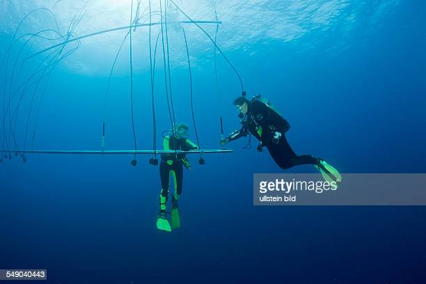 Divers breathe pure Oxygen after deep Wreckdive at Decompression Trapeze Marshall Islands Bikini Atoll Micronesia Pacific Ocean