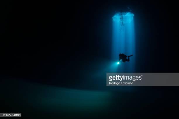 divers exploring cenote maravilla, mexico - fondo marino fotografías e imágenes de stock