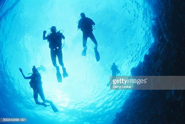 Divers near surface, view from below, underwater view