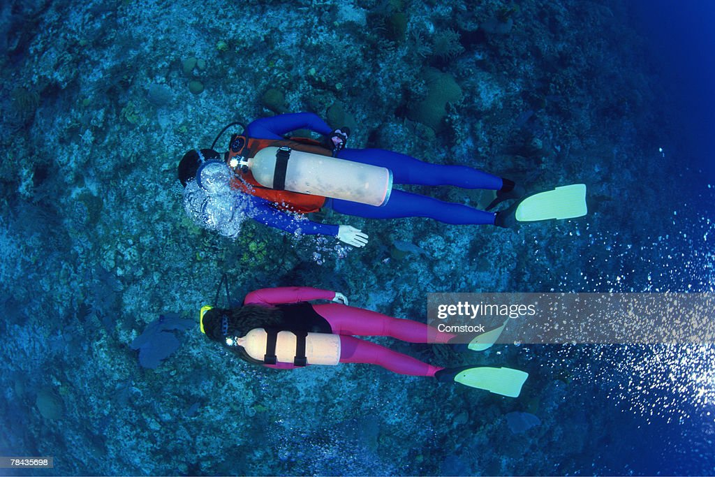 Divers over shallow reefs , Caribbean : Stockfoto