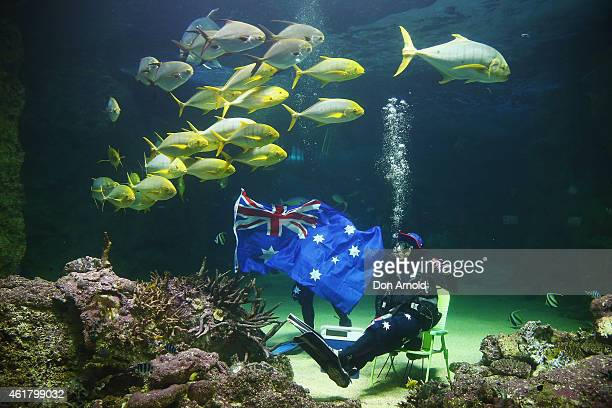 Divers pose with an Australian flag and an esky during Australia Day underwater party at SEA LIFE Sydney Aquarium on January 20 2015 in Sydney...