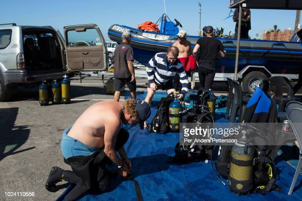 Divers prepare to go on a shark dive trip with an African Adventure diving boat during an early morning dive at Protea Banks on April 25 2018 in...