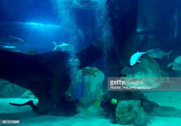 Divers set up a Nativity Scene at the Madrid Zoo Aquarium in the Casa de Campo in Madrid on December 13 2017 / AFP PHOTO / PIERREPHILIPPE MARCOU