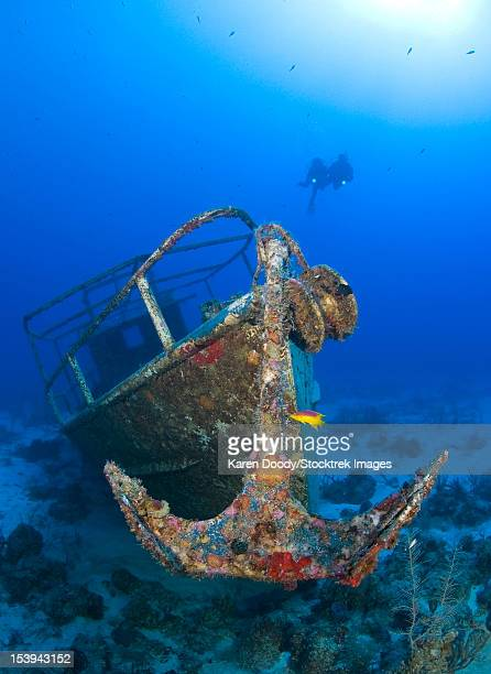 Divers visit the wreck of the Pelicano which sits on the bottom of the Caribbean Sea near Playa Del Carmen, Mexico.