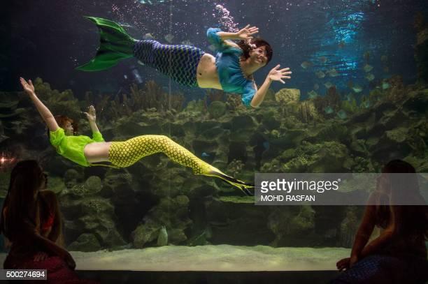 Divers wearing mermaid outfits perform inside a tank at the Aquaria KLCC in Kuala Lumpur on December 7 2015 The scubadiving Santa Claus feeding fish...