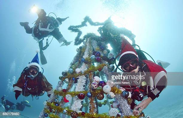 Divers wearing Santa Claus costumes poses for photos around an underwater Christmas tree at a marine park in the central Japan city of Ito on Dec 17...