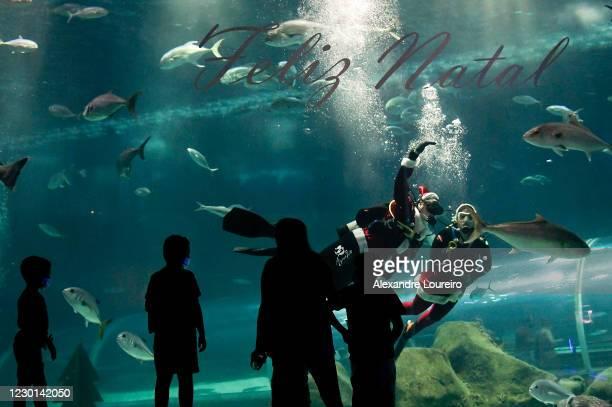 Divers wearing Santa Claus costumes salute children at the AquaRio Aquarium amidst the Coronavirus Pandemic on December 15, 2020 in Rio de Janeiro,...