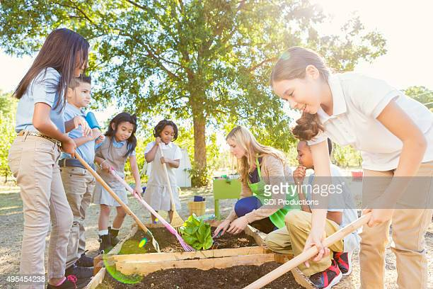 Diverse elementary class working in garden