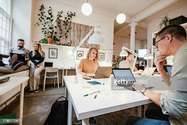diverse freelancers working together in modern office - scandinavian descent stock pictures, royalty-free photos & images