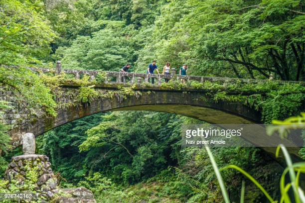 Diverse group of travellers  looking over a very old bridge with dense greenery surrounding them