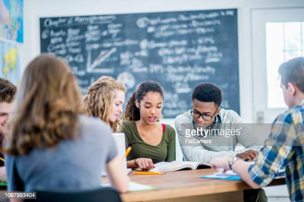 diverse group studying - state school stock pictures, royalty-free photos & images