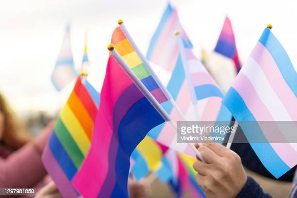 diverse lbgtqi flags - flag stock pictures, royalty-free photos & images