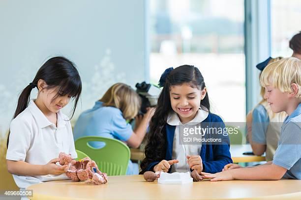 Verschiedene private Grundschule Schüler im Klassenzimmer lernen science-Modelle