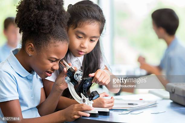 diverse schoolgirls work together on science project - microscope stock pictures, royalty-free photos & images