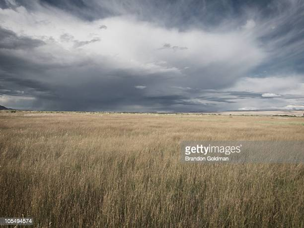divide - steens mountain stock pictures, royalty-free photos & images
