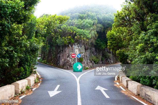 dividing road with arrow signs - decisions stock pictures, royalty-free photos & images