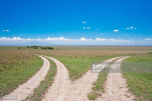 dividing roads, serengeti fork junction - forked road stock pictures, royalty-free photos & images