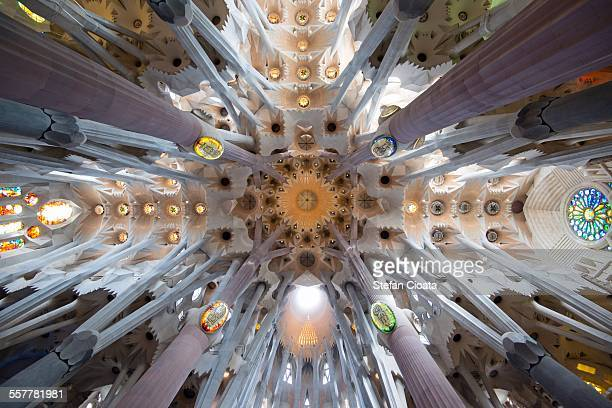divine light - barcelona spain stock photos and pictures