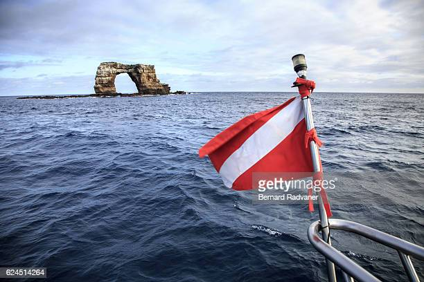 diving flag in front of darwin island dive site. galapagos islands. - darwin island stock photos and pictures