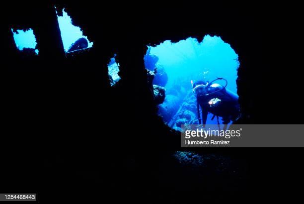 diving the antilla. - aruba stockfoto's en -beelden