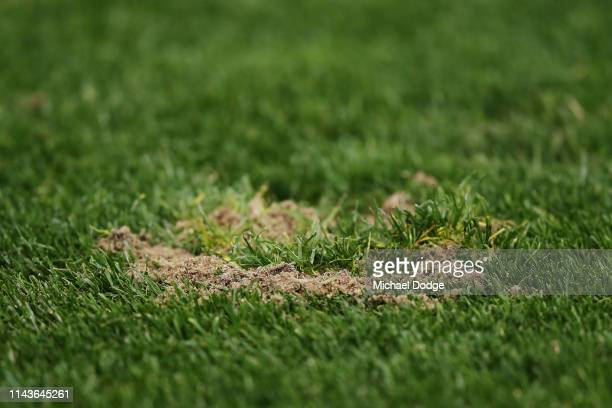 Divot is seen after Dyson Heppell of the Bombers marked the ball on a patch of grass when warming up during the round 5 AFL match between North...