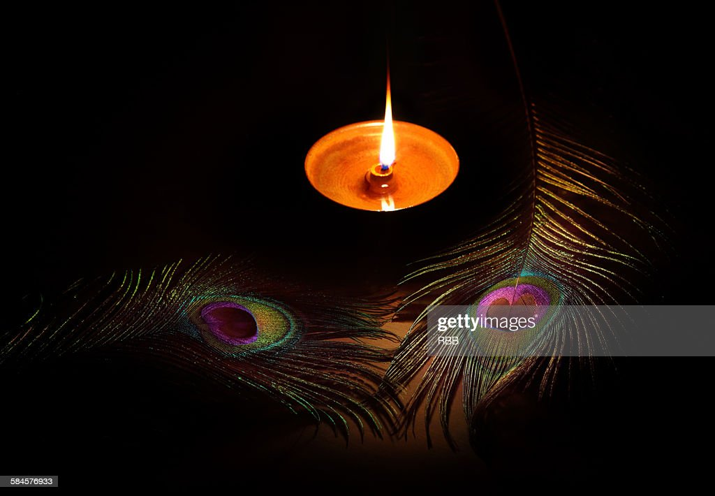 Diwali Oil Lamps and Peacock Feather : Stock Photo