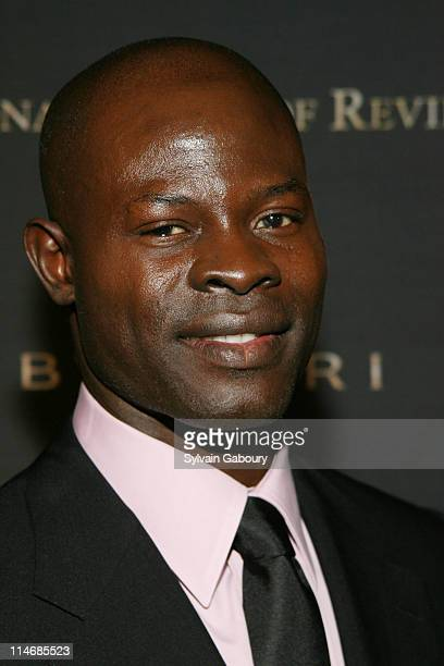 Djimon Hounsou during The 2006 National Board of Review of Motion Pictures Awards Gala Inside Arrivals at Cipriani's 42nd Street in New York City New...