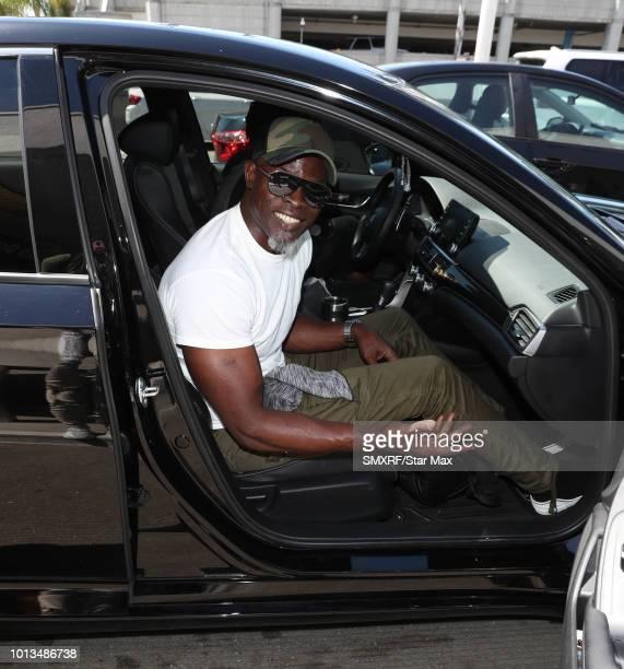 Djimon Hounsou is seen on August 8 2018 in Los Angeles CA