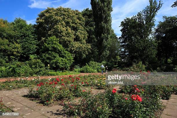 DKrefeld Rhine Lower Rhine Rhineland North RhineWestphalia NRW DKrefeldOppum Botanical Gardens rose beds bushes trees