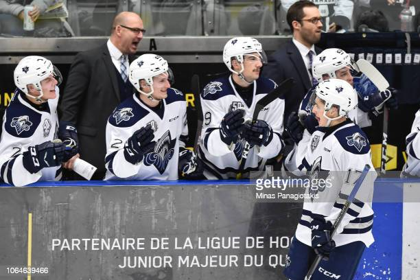 Dmitry Zavgorodniy of the Rimouski Oceanic celebrates his second period goal with teammates on the bench against the Blainville-Boisbriand Armada...