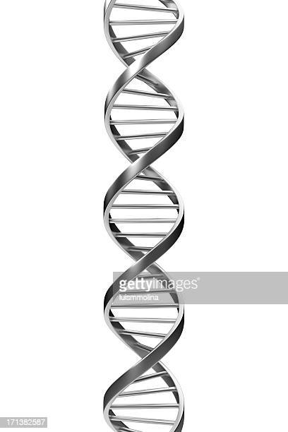 dna - dna stock pictures, royalty-free photos & images