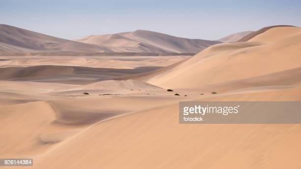 Dünen der Namib