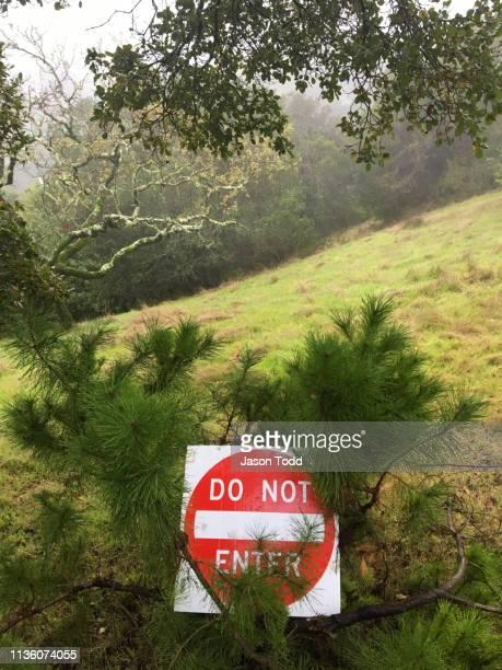 Do Not Enter road sign in nature on hillside