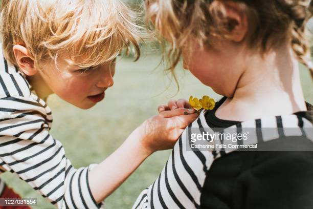 do you like butter? - uncultivated stock pictures, royalty-free photos & images