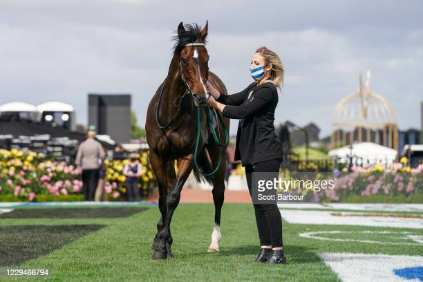 Do You Reckon after winning the Melbourne Cup Carnival Country Final at Flemington Racecourse on November 05, 2020 in Flemington, Australia.