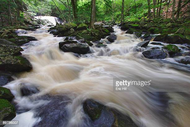 doane's falls - worcester massachusetts stock pictures, royalty-free photos & images