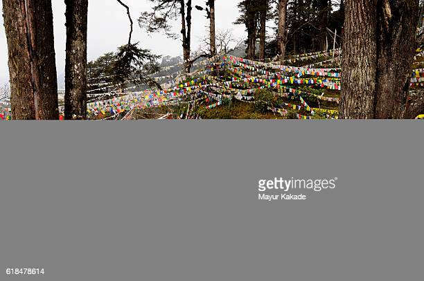 dochula pass, bhutan - dochula pass stock-fotos und bilder