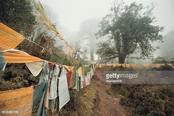 dochula stupas with foggy day at dochula pass, bhutan - dochula pass stock-fotos und bilder