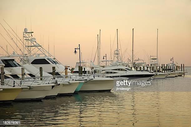 docked boats at coconut grove marina
