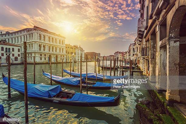 docked gondolas on the grand canal (venice, italy) at sunrise - gondola traditional boat stock pictures, royalty-free photos & images