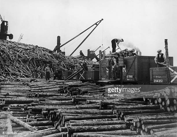 Dockers load up pit props at Cardiff Docks, 11th August 1937.