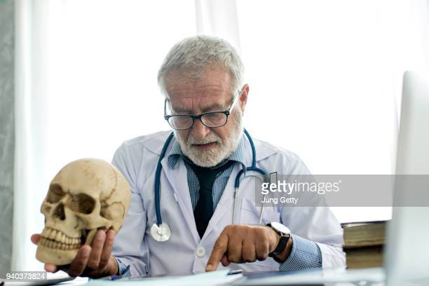 doctor analysis skull - funny skeleton stock photos and pictures
