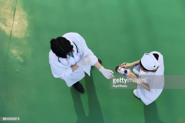 Doctor and nurse preparing for treatment