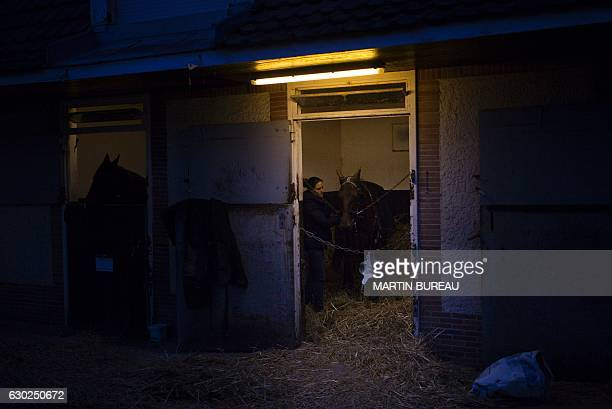 Doctor AudeGaelle HeitzmannZiegler examines a horse in his box at the equestrian training center of Grosbois in MarollesenBrie on November 24 2016 /...