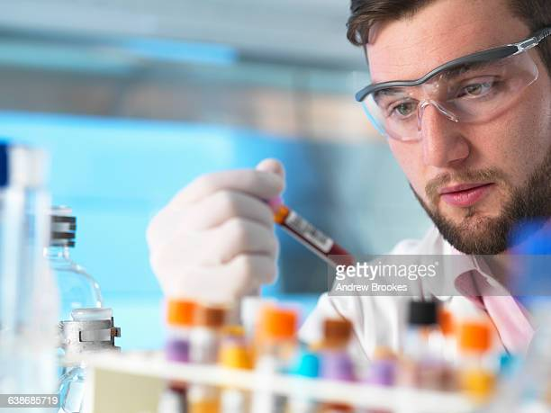 doctor examining patient medical samples in laboratory - hematology stock pictures, royalty-free photos & images
