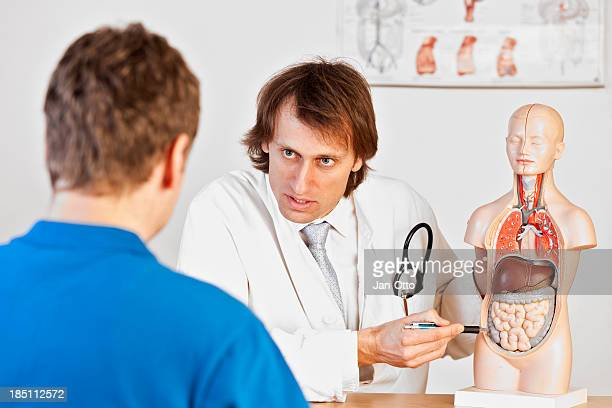 doctor explaining abdominal pain - human stomach internal organ stock photos and pictures