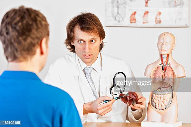 doctor explaining liver problems - human liver stock photos and pictures
